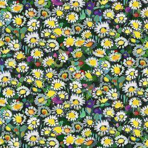 Lawn Dasies Yellow dcx9064